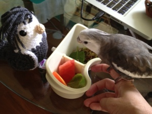 """Well okay, if you say it's safe to eat this """"chop"""" stuff..."""