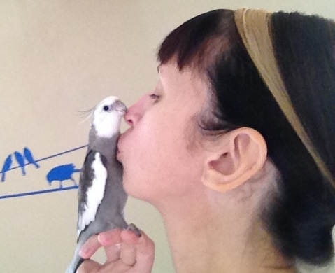 """Pearl and his mommy share a """"beak kiss"""" to celebrate her birthday."""