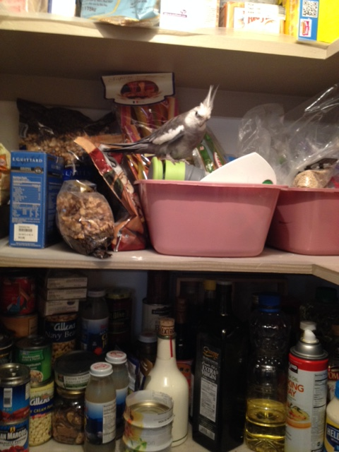 Let's say you decide you want to visit Grandma's pantry.