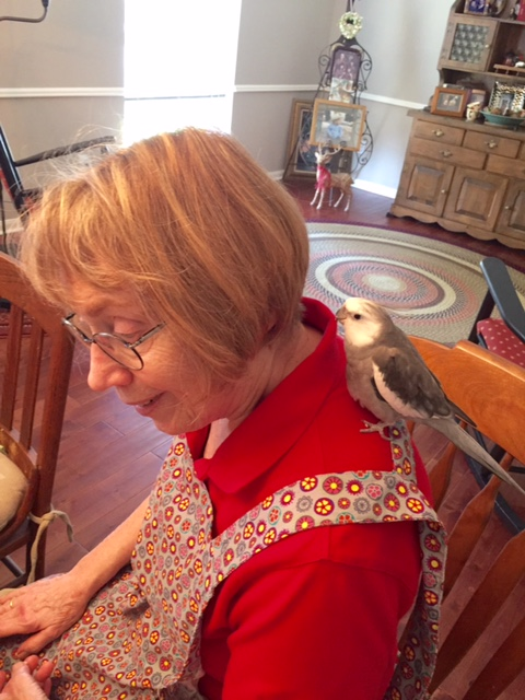 Thanks, Grandma - lunch was delectable. I'll perch with you to show my appreciation.