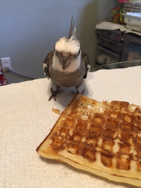 Finally. It was a long, exhausting battle, but I finally brought down this elusive waffle.