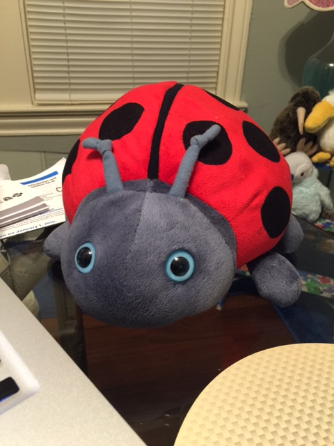 "Enter Exhibit A: the ""ladybug."""