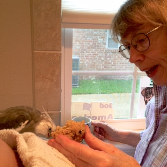 I can tell my Grandma really loves me, because she is feeding me the first fresh-baked warm scone right from the oven!