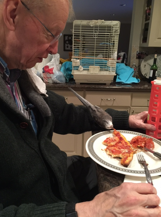 Happiness is....when your Grandpa, the Tall Tree, lets you sample the first delicious bite of his pizza dinner.