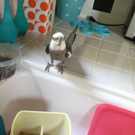"""My mommy and I are a perfect match - I can tell she loves me because she gets so excited to play """"I Spy My Breakfast"""" just like I do!"""
