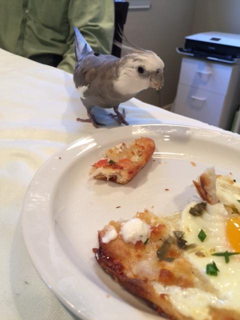 breakfastpizza3