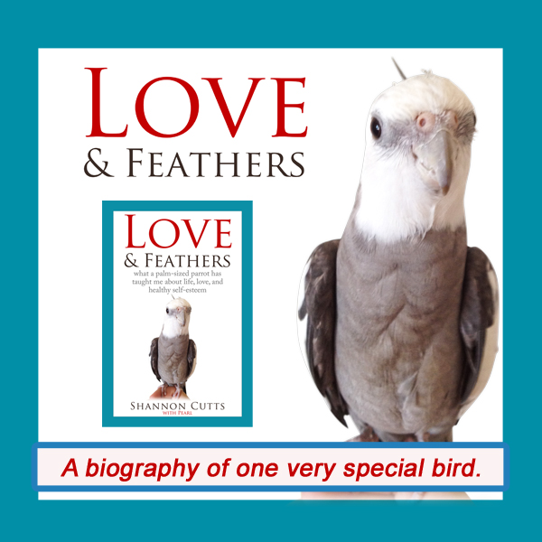Love & Feathers is on Amazon