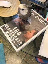 """Pearl's Weekend Reading List: """"100 Heartbeats"""""""