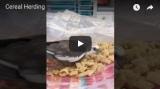 "Video Wednesday: ""CerealHerding"""